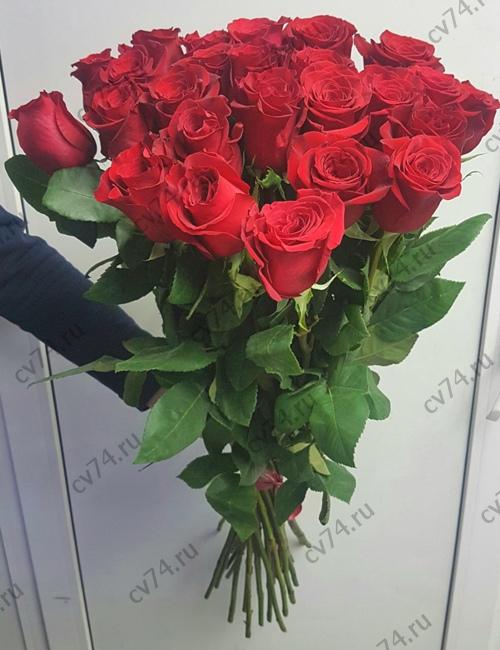 Цветы челябинск 25 розы акция, купить букет из орхидей екатеринбург